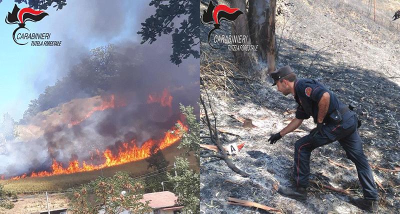 Castiglione Cosentino, individuati i responsabili di un vasto incendio
