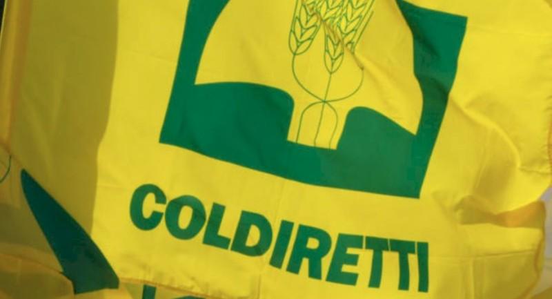 RecoveryPlan, Coldiretti Calabria __Bozza governo taglia rivoluzione green_