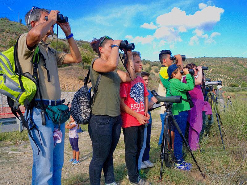 Lipu Rende, birdwatching in Calabria domenica 3 ottobre